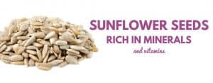 sunflower seeds flour