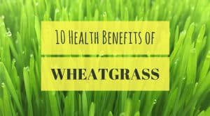 Health Benefits of wheat grass